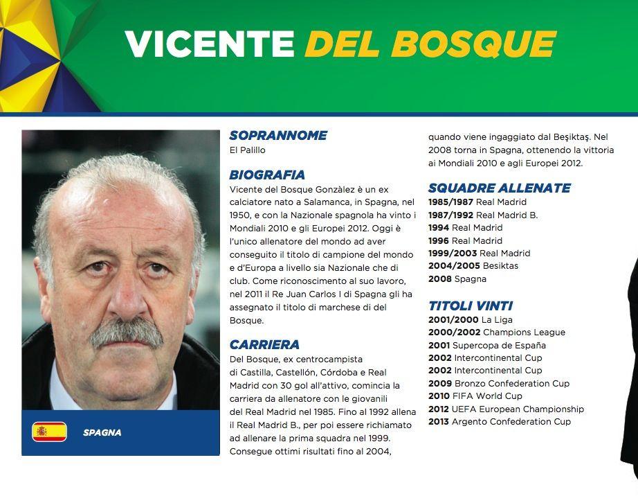Vicente Del Bosque Spagna