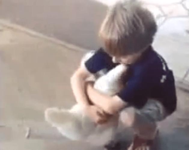 Il bambino che abbraccia una gallina