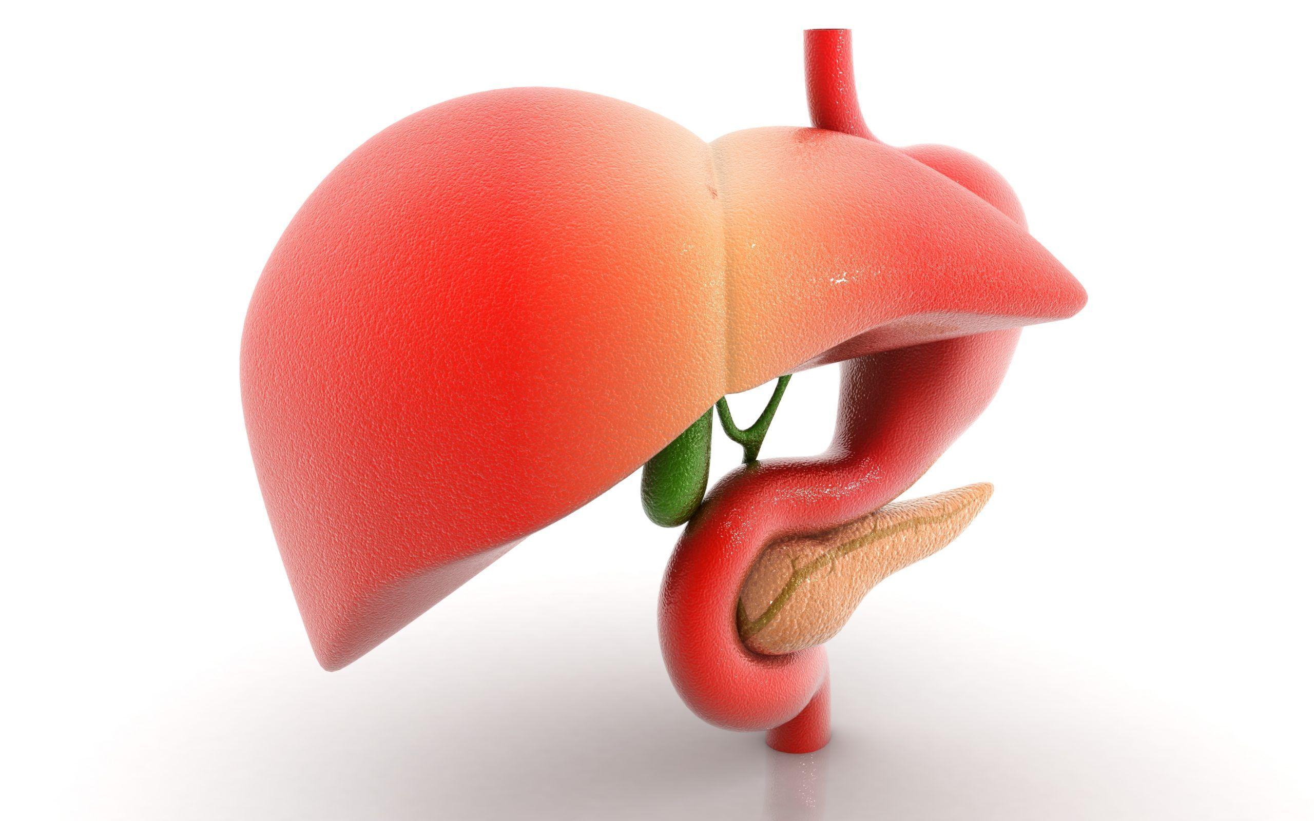 Fegato grasso: i sintomi e la dieta da seguire