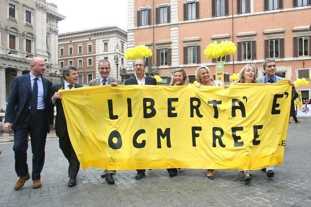 Coltivazione Ogm in Ue: via libera a divieti nazionali