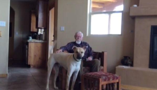 L'uomo malato di Alzheimer e il suo cane
