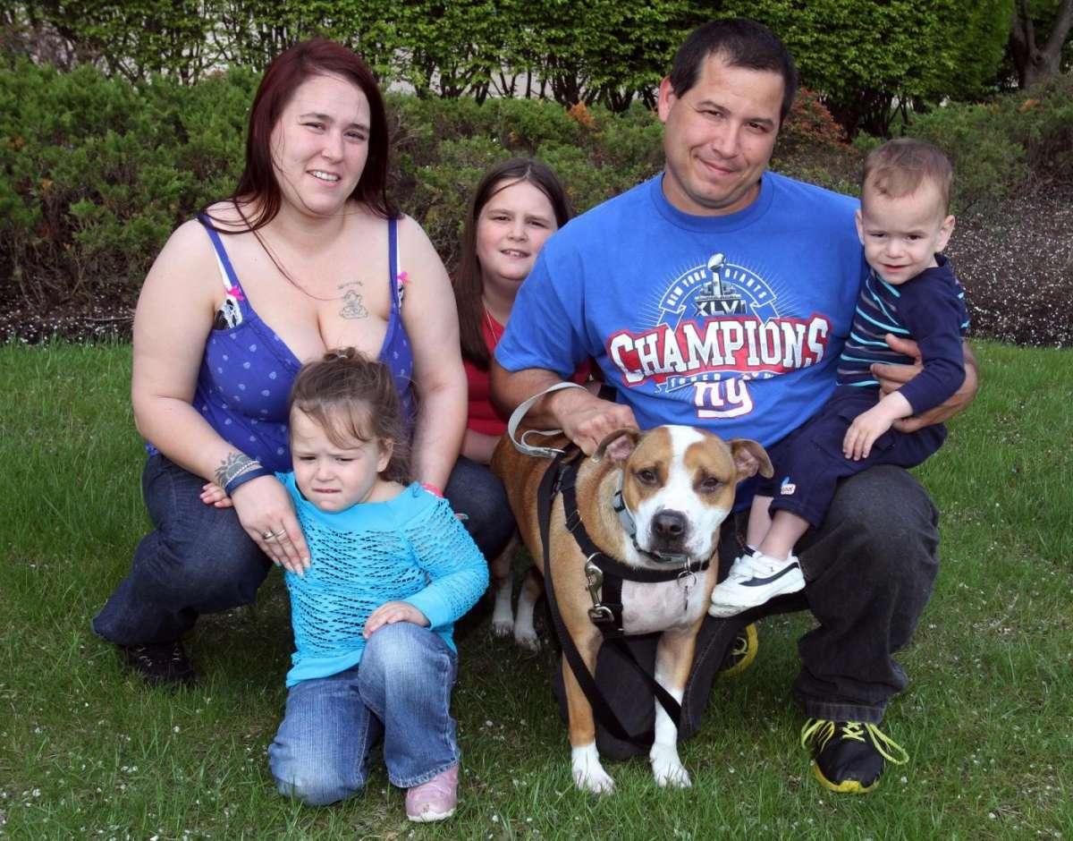 Cane ritrovato 18 mesi dopo l'uragano Sandy: la storia di Reckless