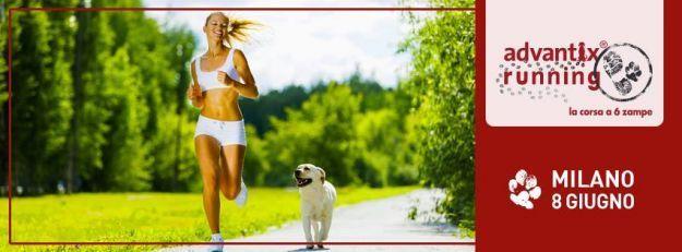 Advantix Running 2014: la maratona dei vip contro l'abbandono degli animali