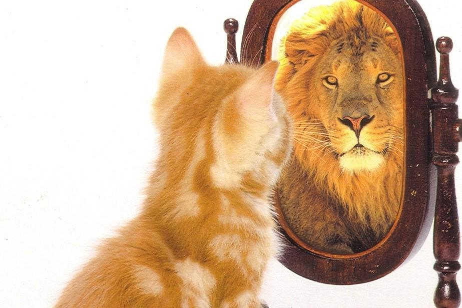 Quanta autostima hai? [TEST]