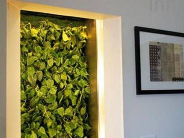 Biowall: un muro verde per depurare l'aria di casa