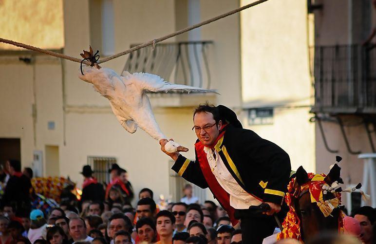 Oche appese e uccise dai cavalieri: la barbara usanza della festa di Santiago in Spagna