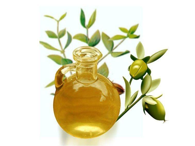 Olio di jojoba: usi e proprietà benefiche