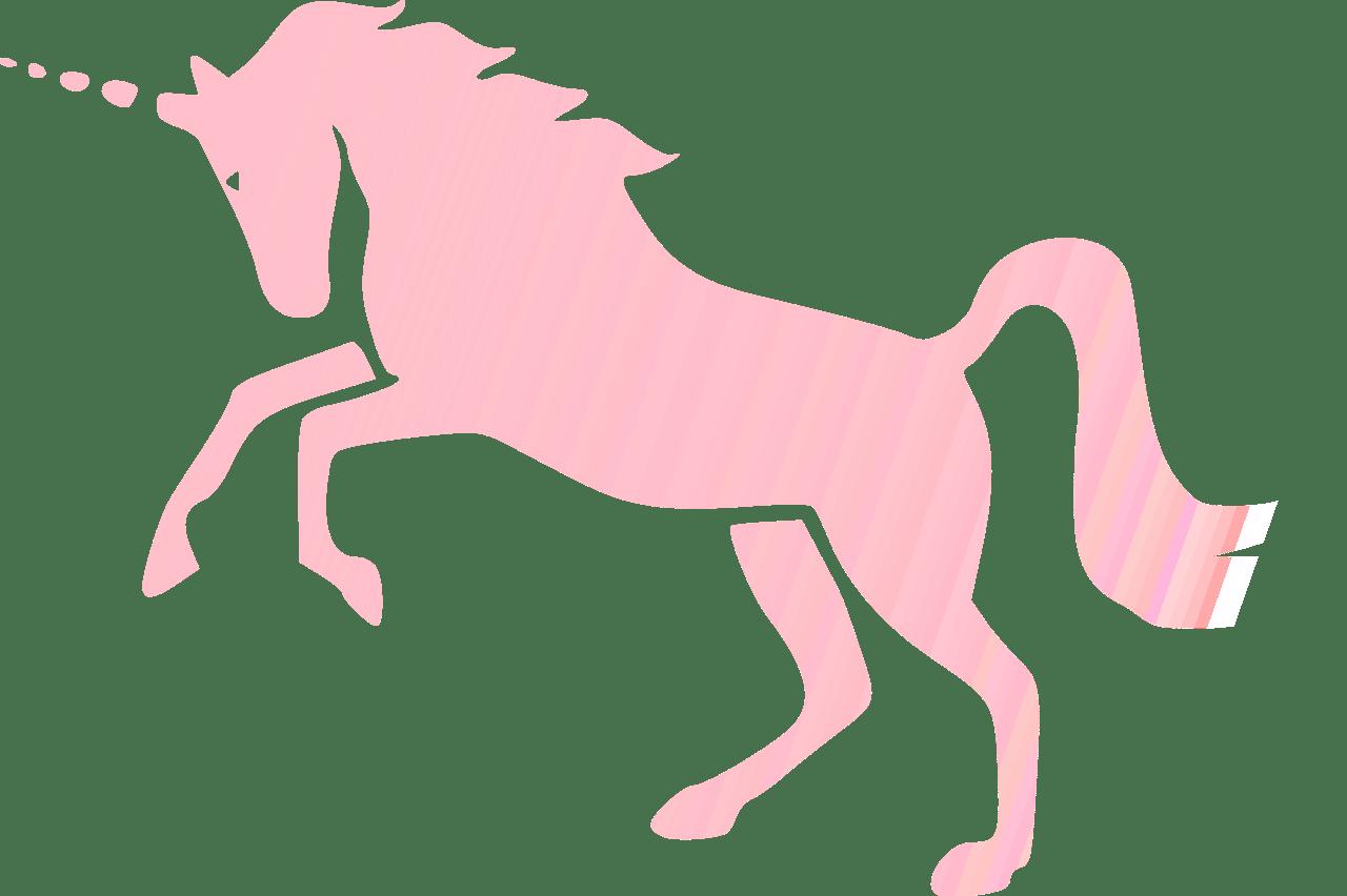 Invisibile Unicorno Rosa