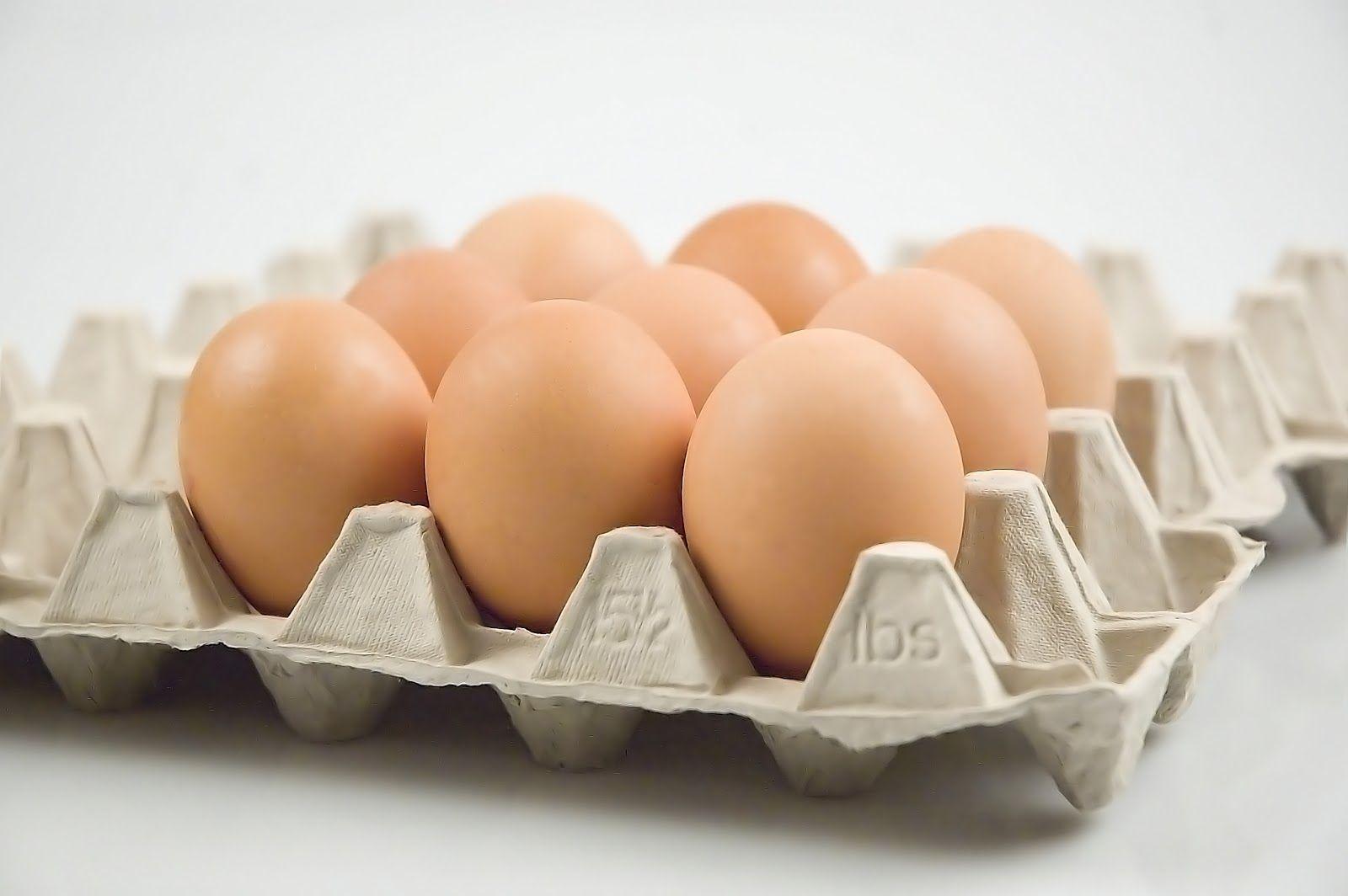 Diossina nelle uova: 10 campioni contaminati a Terni