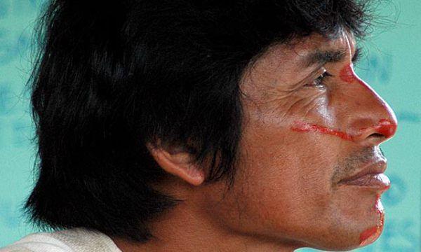 Morto Edwin Chota, leader del movimento a favore dell'Amazzonia: è omicidio
