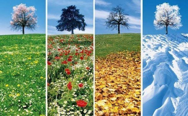 Che stagione sei? [TEST]