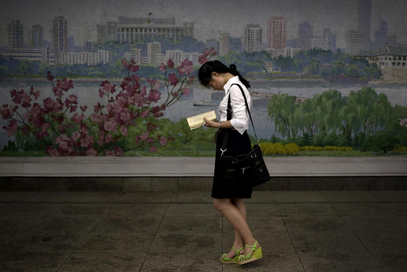 Alfabetizzazione in Corea dl Nord