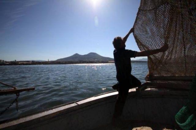 Pesca intensiva, Greenpeace chiede lo stop per salvaguardare i mari