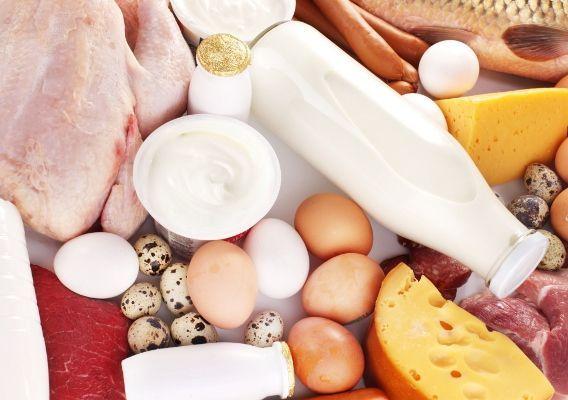 Alimenti ricchi di zinco, l'elenco completo