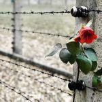Giornata della memoria 2017: i libri per ricordare la Shoah