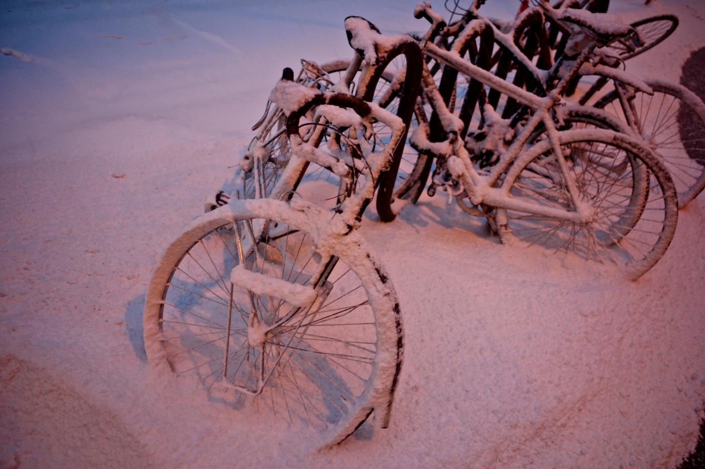 Giorni della Merla: neve e gelo in arrivo sull'Italia