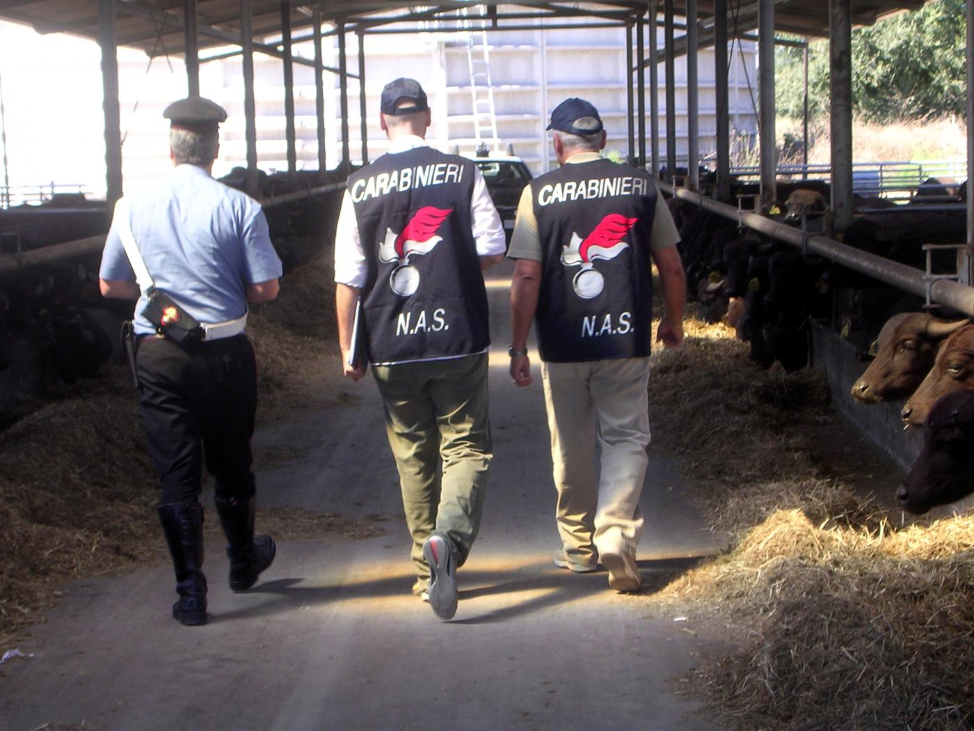 Alimenti scaduti: 18 tonnellate di merce sequestrata in 15 giorni