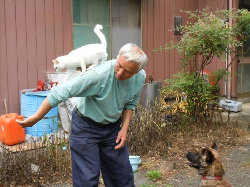 Naoto Matsumura, l'ultimo uomo di Fukushima rimasto a curare gli animali