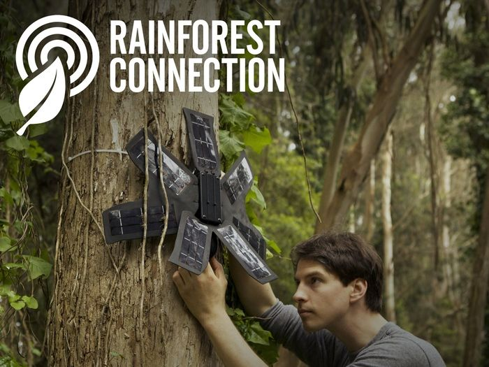Rainforest Connection