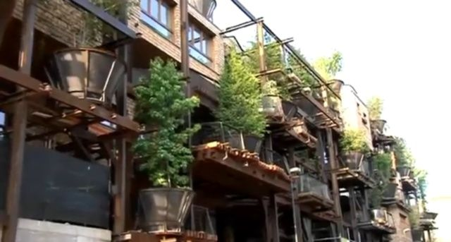25 Verde, casa-bosco nel cuore di Torino