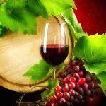 Un bicchiere di vino rosso corrisponde a un'ora di allenamento in palestra