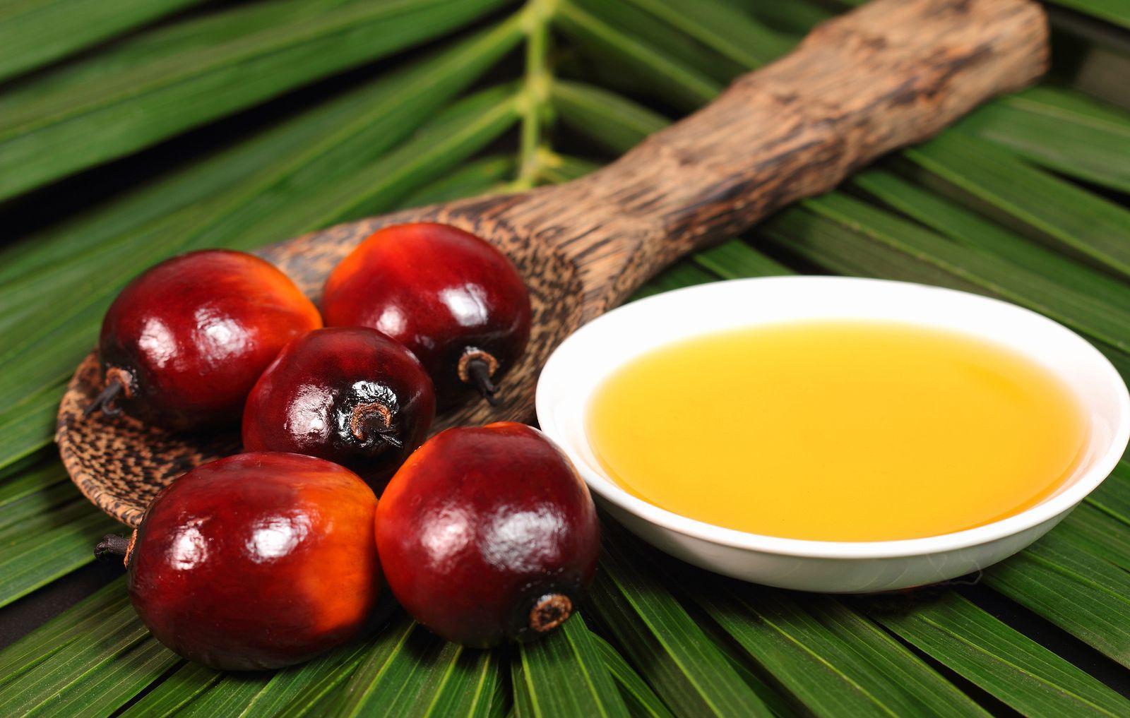 Olio di palma: dove si trova, perchè fa male e quali sono le alternative