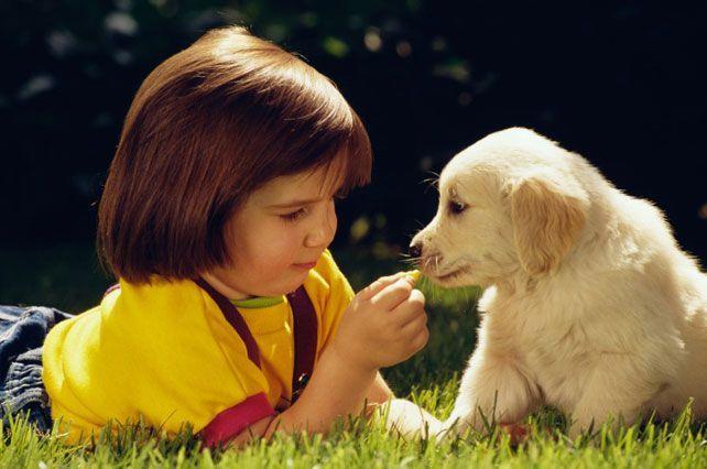 Pet Therapy, cos'è e a cosa serve