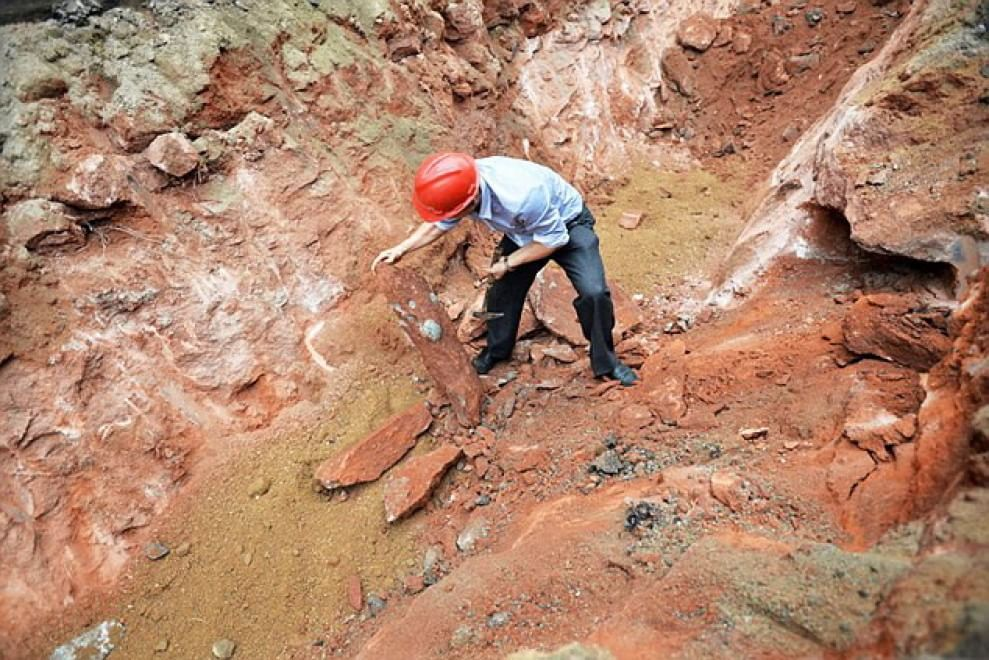43 uova di dinosauro scoperte durante i lavori in un cantiere stradale