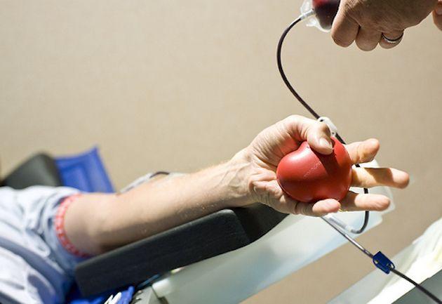 Gay esclusi dalle donazioni di sangue in Francia, la Corte UE: 'Può essere giustificato'