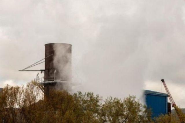 reati ambientali