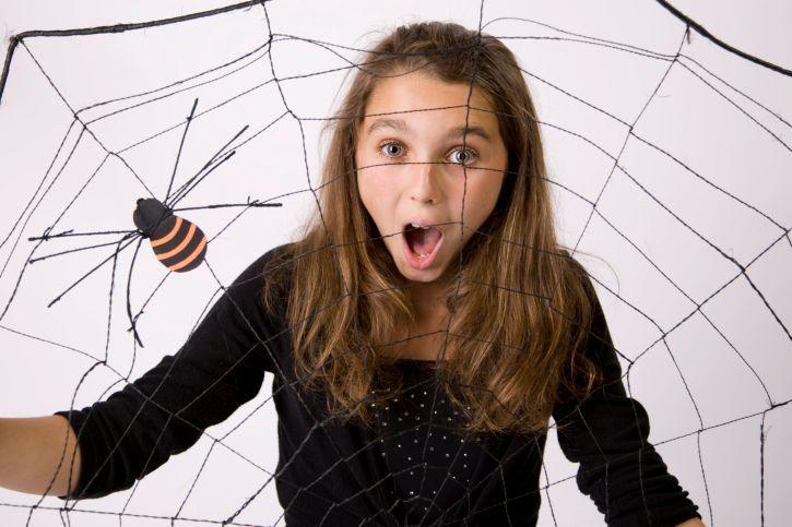 Se hai paura dei ragni vuol dire che sei in ottima salute