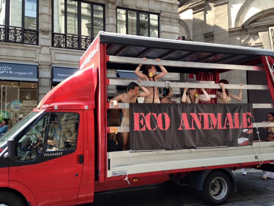 Animali schiavi per il macello: corteo a Milano di Eco Animale
