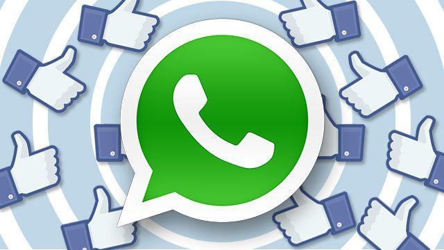 WhatsApp sempre più Facebook: arrivano Mi Piace e Segna come non letto