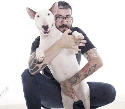 Jimmy Choo, il bull terrier dell'artista brasiliano Rafael Mantesso guadagna una capsule collection