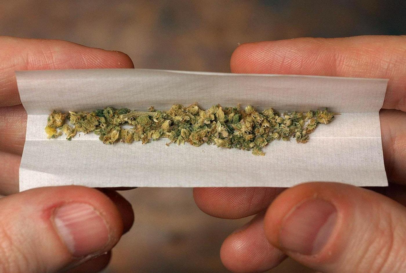 Legalizzazione della marijuana in Italia: i pro e i contro