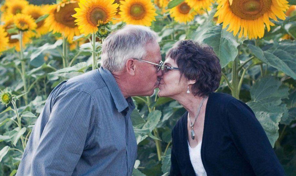 Usa: pianta 4500 girasoli in memoria della defunta moglie