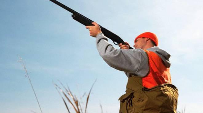 caccia animali