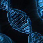 Scoliosi, ultime scoperte: rintracciato il gene responsabile