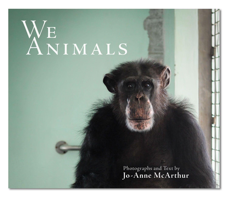 """We Animals, la denuncia di Jo-Anne McArthur: """"Le mie foto danno voce a chi non ce l'ha"""" [INTERVISTA]"""