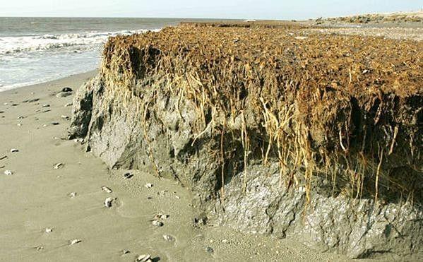 erosione cambiamenti climatici