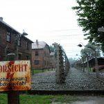 Docce rinfrescanti per i turisti di Auschwitz: un'offesa alla memoria?
