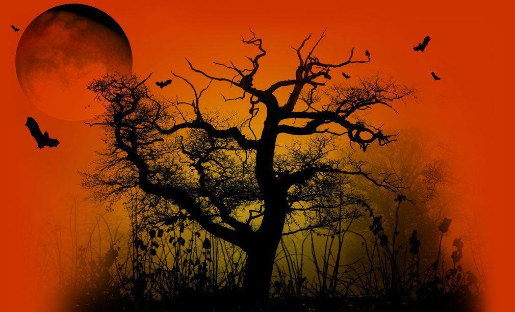 Halloween colori