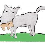 Perché si dice 'in bocca al lupo' e si risponde 'crepi il lupo'?