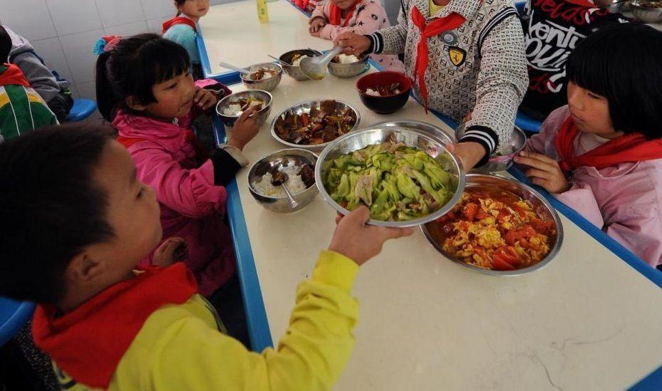 Un unico menu per islamici, ebrei (anche vegani): l'esperimento nelle mense scolastiche milanesi
