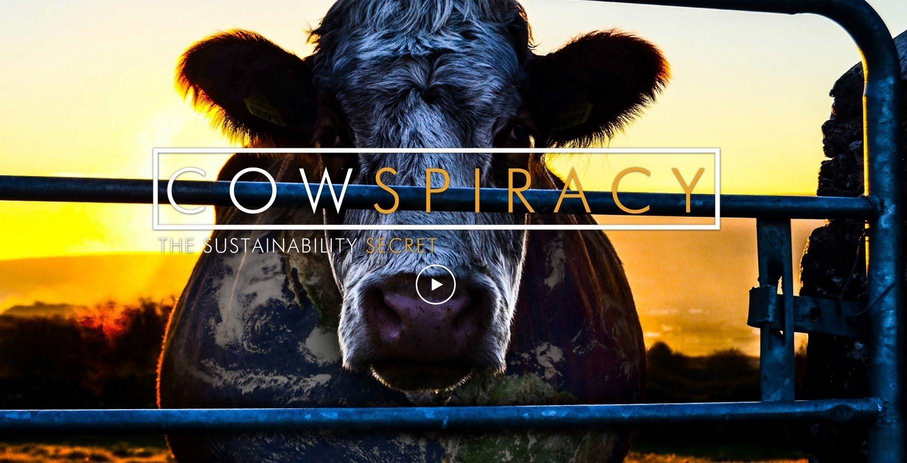 Cowspiracy, il documentario che denuncia l'industria più distruttiva del pianeta [INTERVISTA]