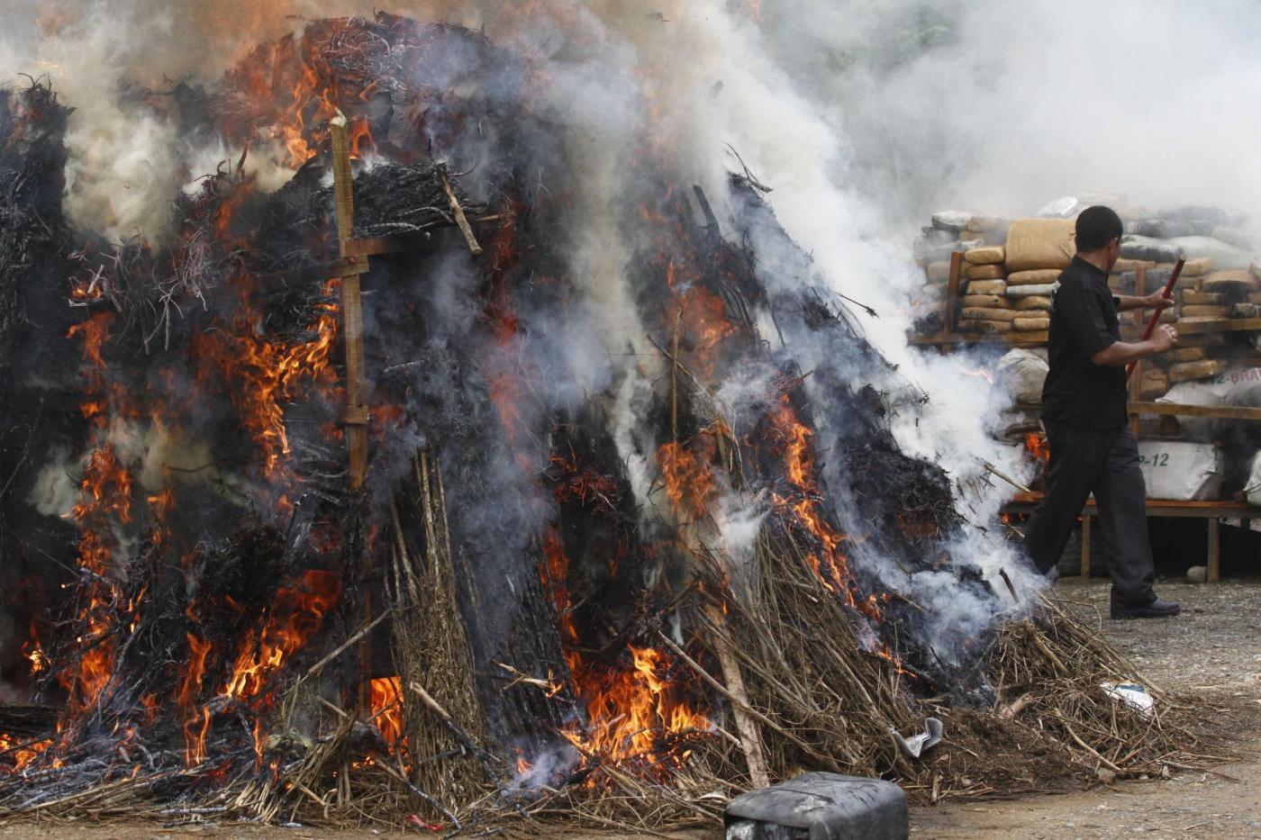 incendi indonesia