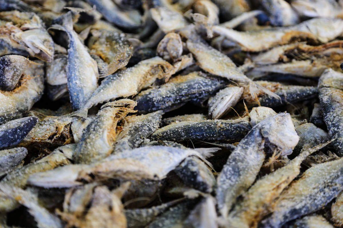 pesce salato 150x150