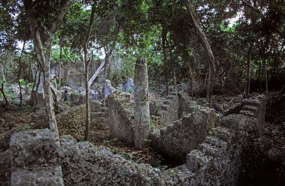 rovine di kua tanzania