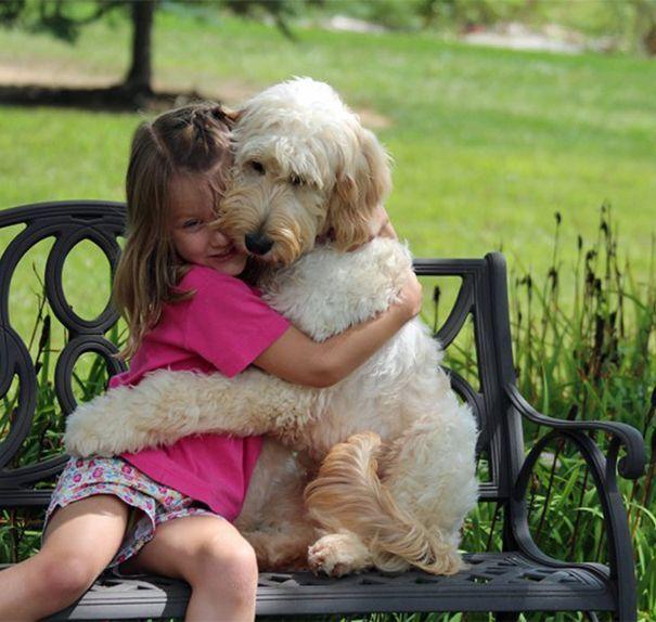 cane abbraccio
