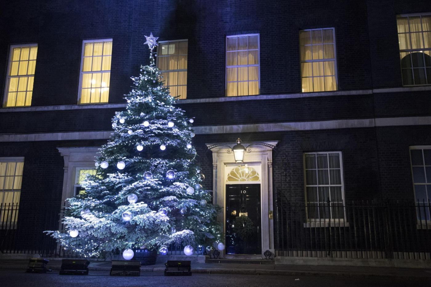 Downing Street Christmas tree